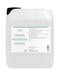 cosiMed Dampfbad Zusatz Euca-Menthol 10 Liter